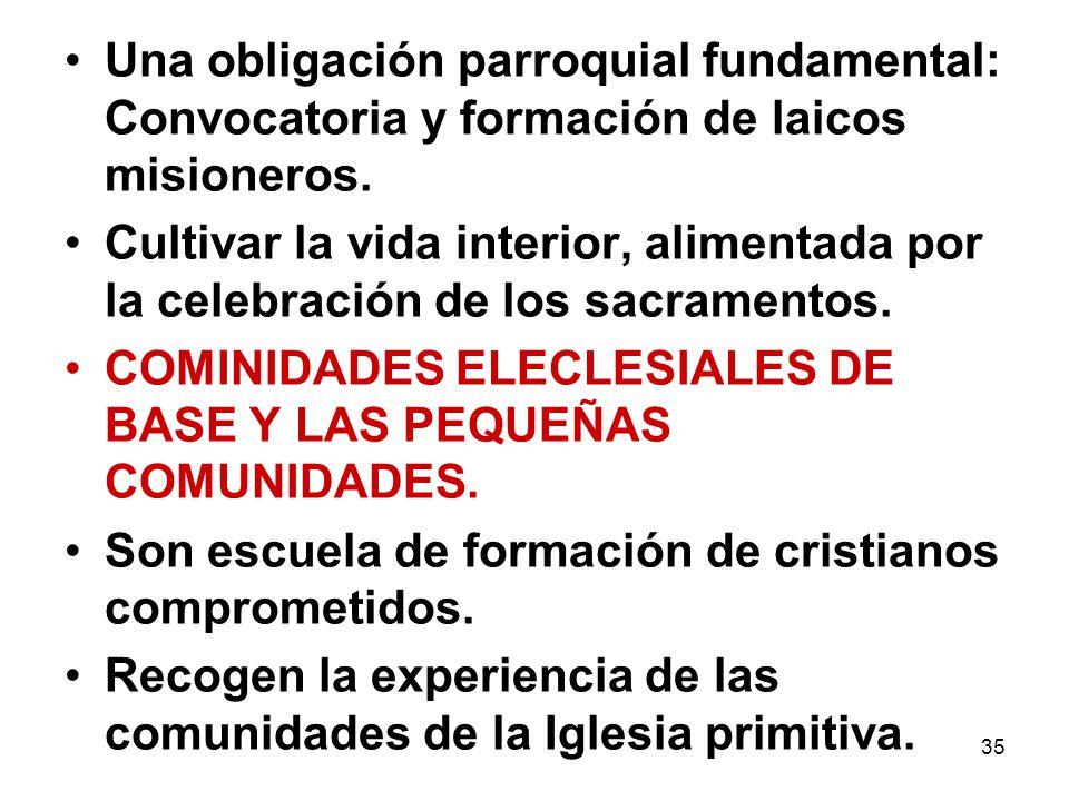 Una obligación parroquial fundamental: Convocatoria y formación de laicos misioneros.