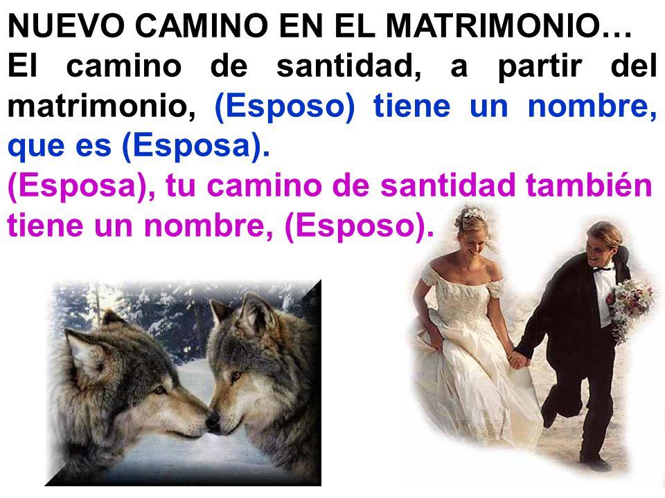 NUEVO CAMINO EN EL MATRIMONIO…
