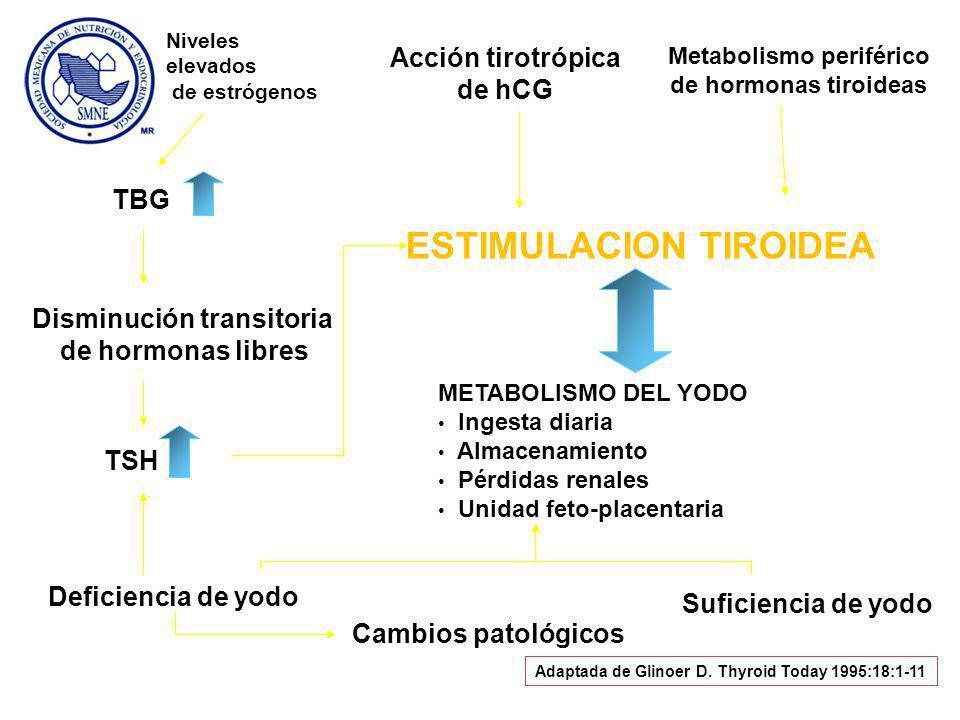 Disminución transitoria Metabolismo periférico de hormonas tiroideas