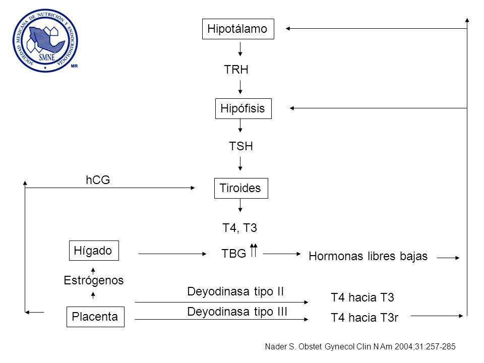Hipotálamo TRH Hipófisis TSH hCG Tiroides T4, T3 Hígado TBG