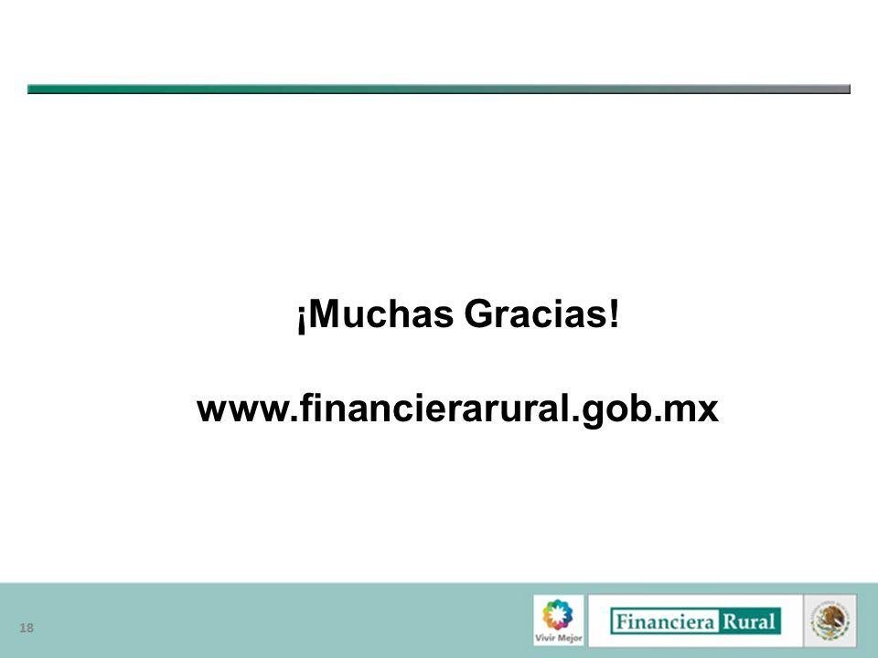 ¡Muchas Gracias! www.financierarural.gob.mx