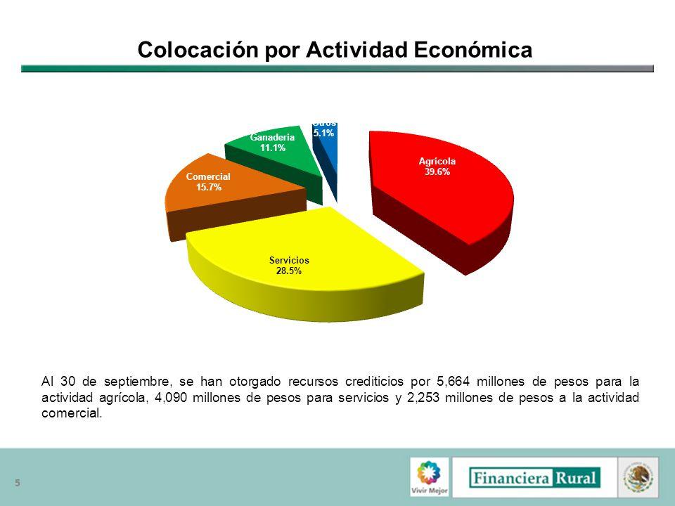Colocación por Actividad Económica