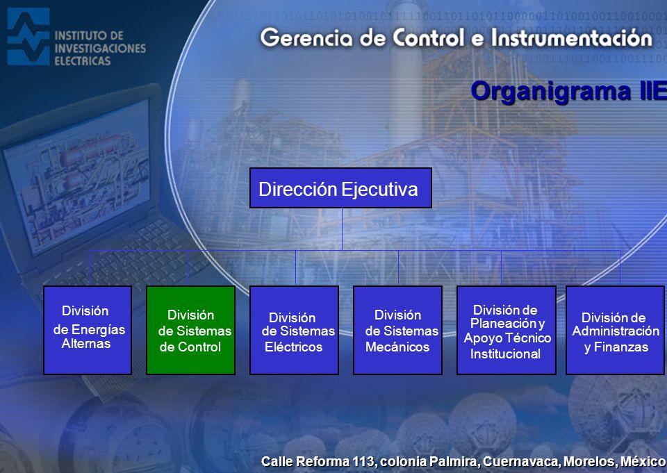 Organigrama IIE Dirección Ejecutiva División de Energías Alternas