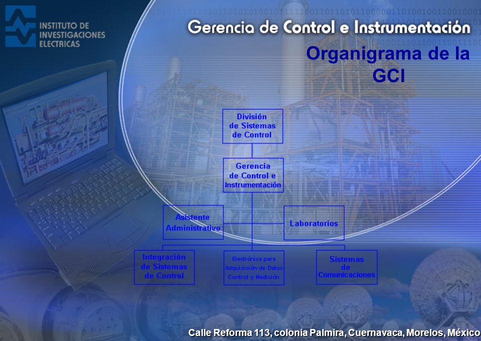 Organigrama de la GCI