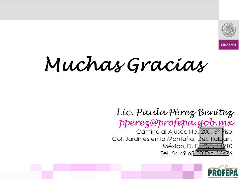 Muchas Gracias Lic. Paula Pérez Benítez pperez@profepa.gob.mx