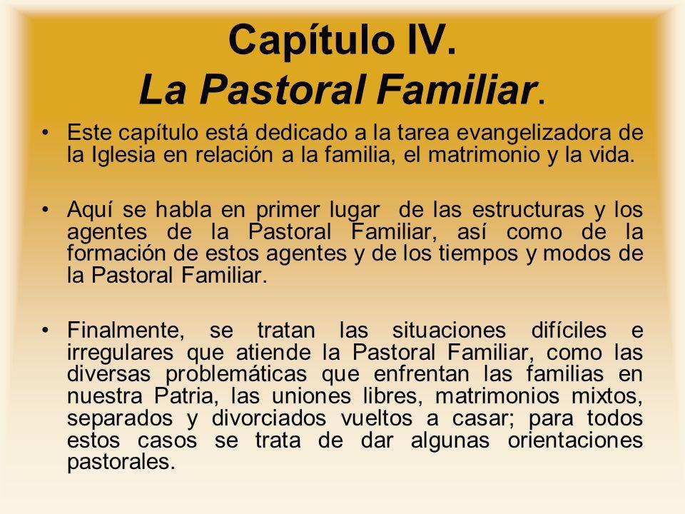 Capítulo IV. La Pastoral Familiar.