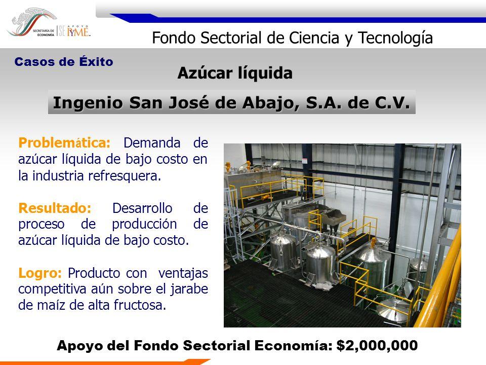 Fondo Sectorial de Ciencia y Tecnología