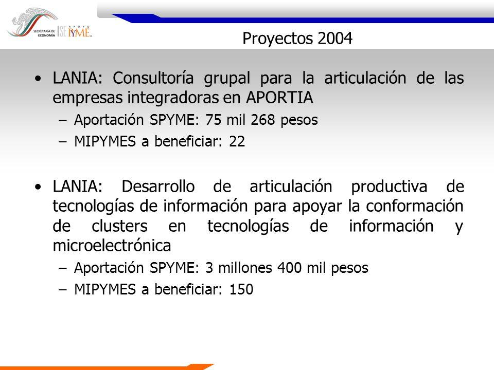 Proyectos 2004 LANIA: Consultoría grupal para la articulación de las empresas integradoras en APORTIA.