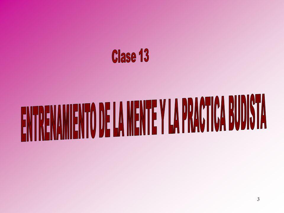 ENTRENAMIENTO DE LA MENTE Y LA PRACTICA BUDISTA
