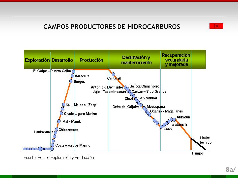 CAMPOS PRODUCTORES DE HIDROCARBUROS