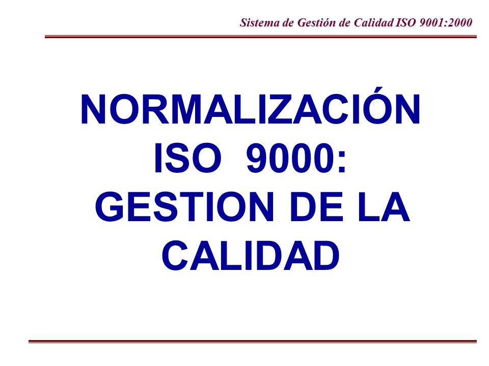 NORMALIZACIÓN ISO 9000: GESTION DE LA CALIDAD