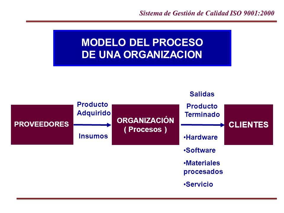 MODELO DEL PROCESO DE UNA ORGANIZACION