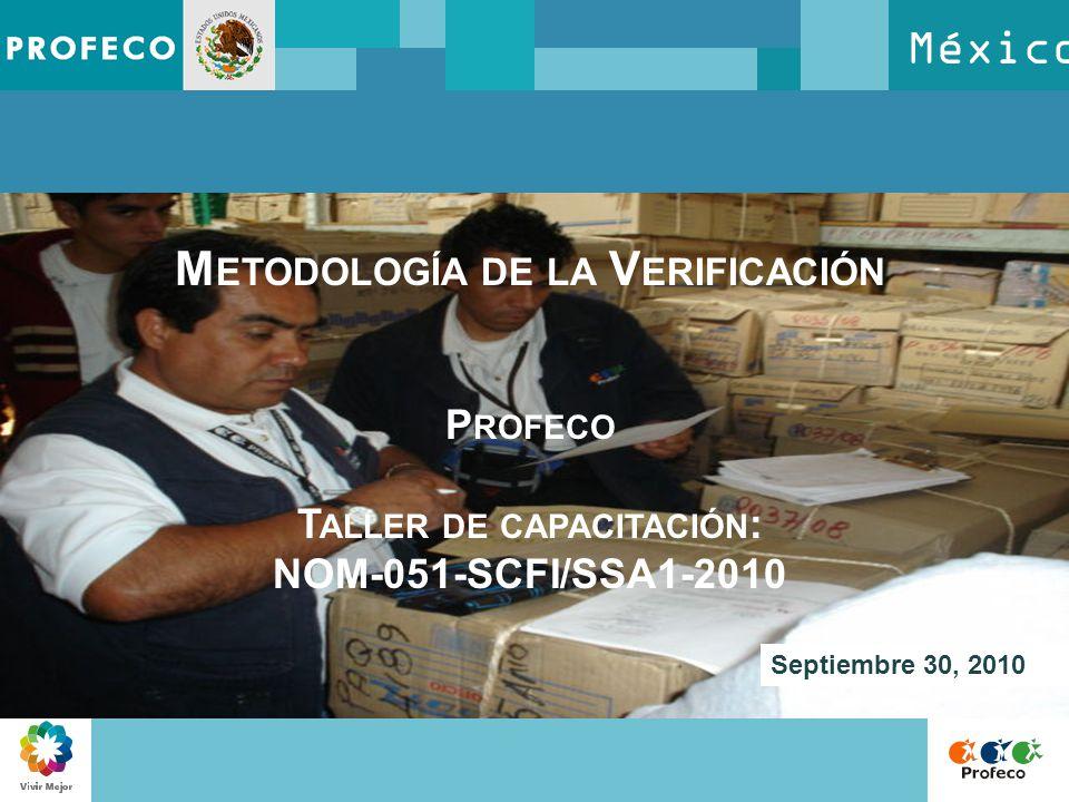 Metodología de la Verificación Taller de capacitación: