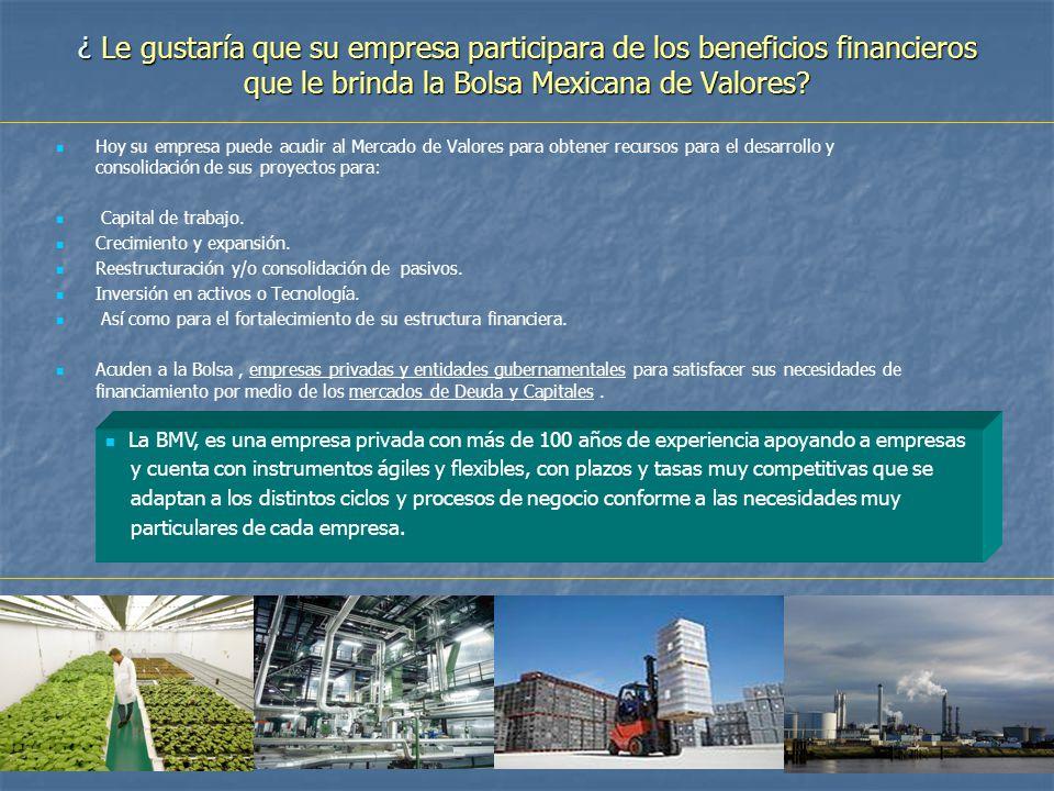 ¿ Le gustaría que su empresa participara de los beneficios financieros que le brinda la Bolsa Mexicana de Valores