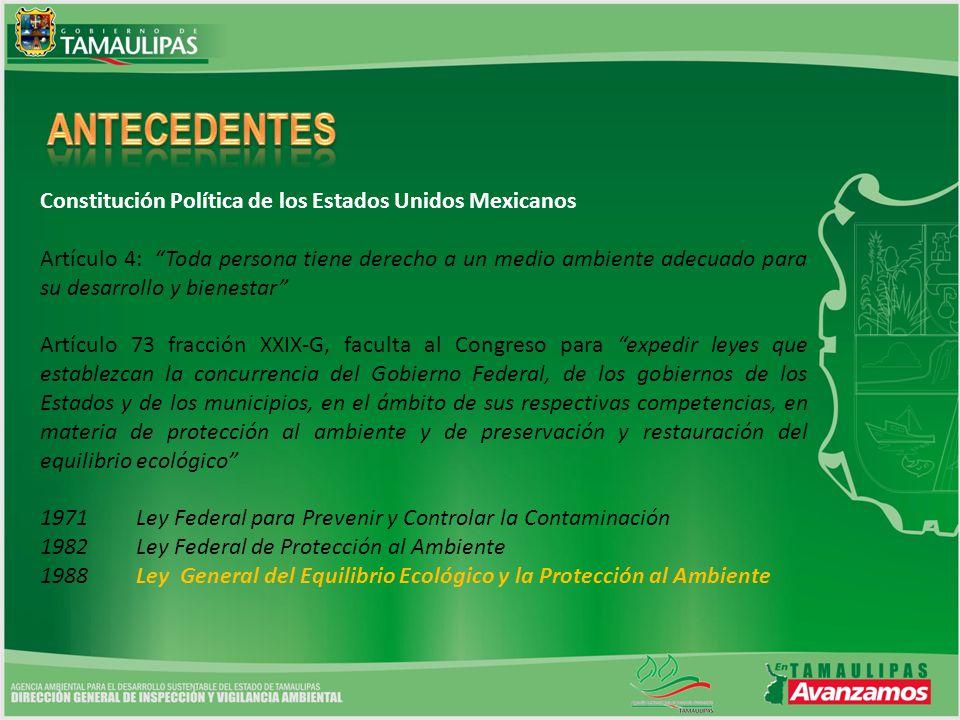 ANTECEDENTES Constitución Política de los Estados Unidos Mexicanos