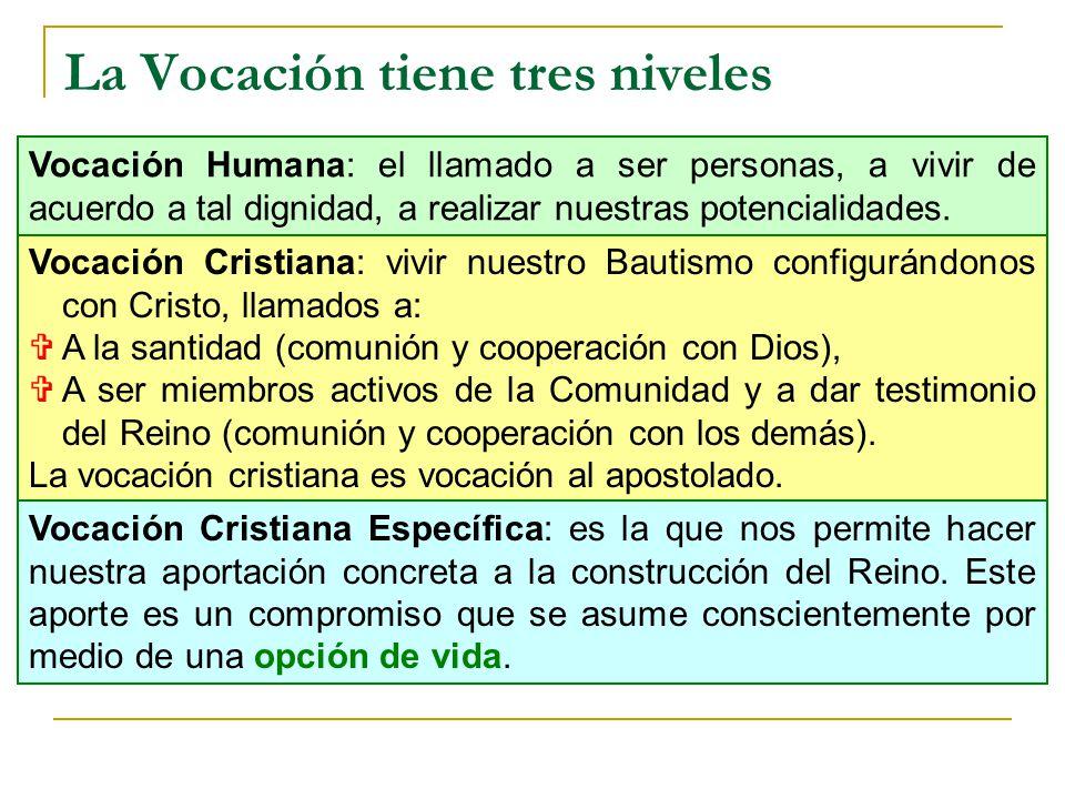 La Vocación tiene tres niveles