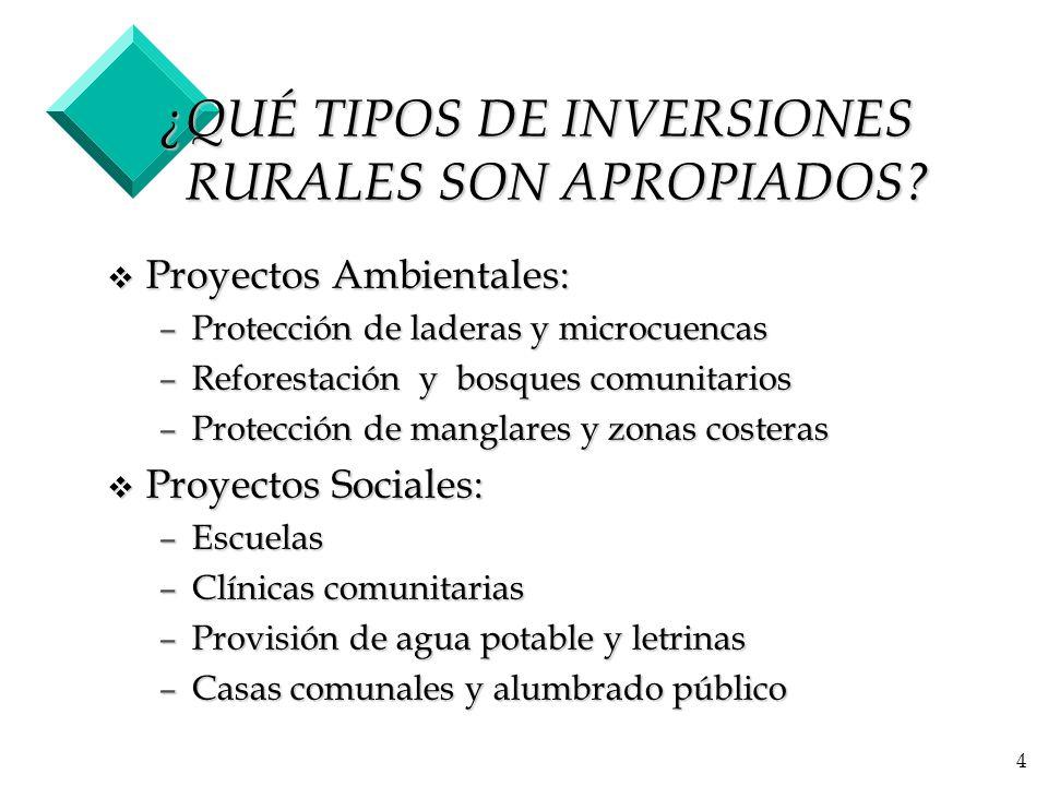 ¿QUÉ TIPOS DE INVERSIONES RURALES SON APROPIADOS