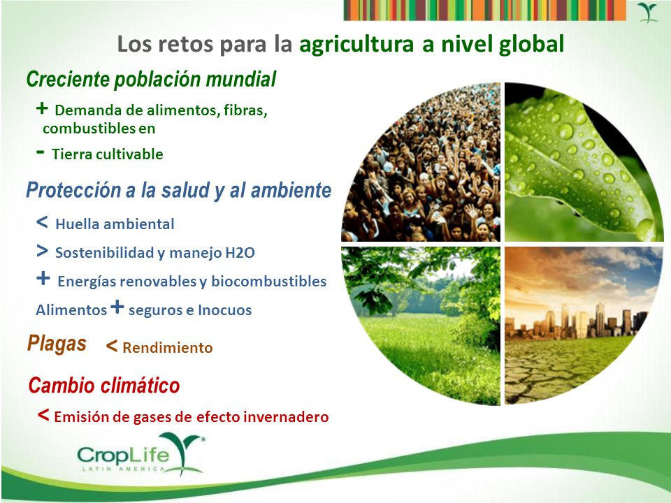 Los retos para la agricultura a nivel global
