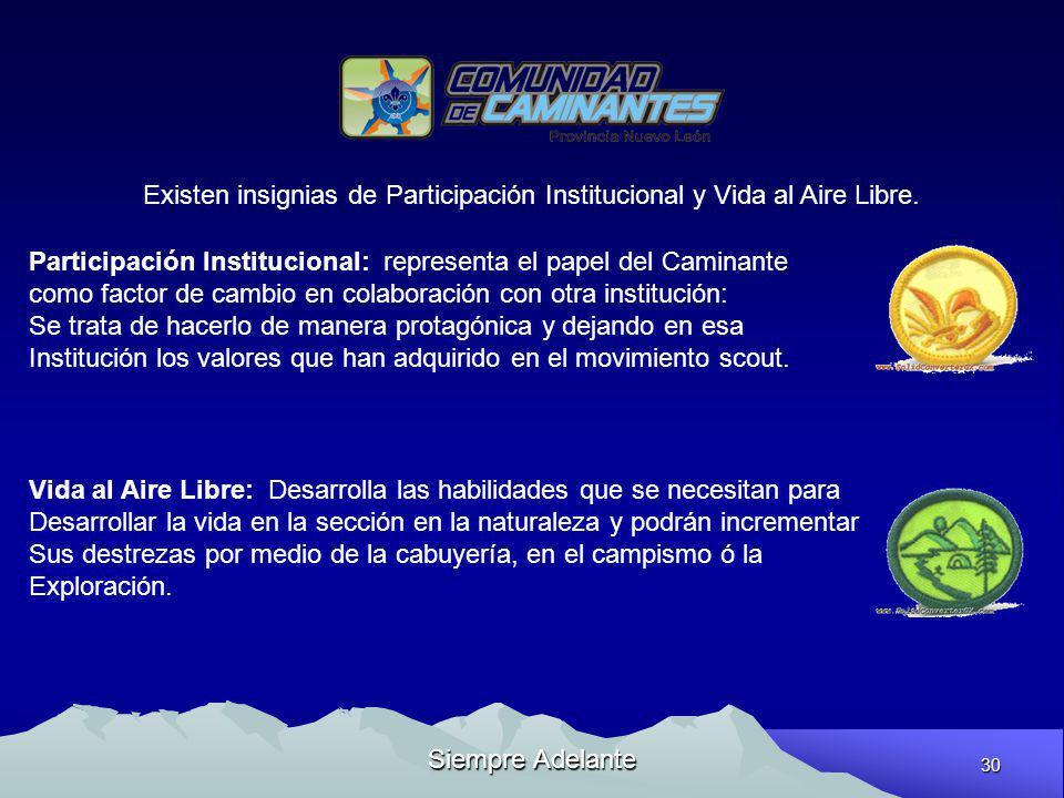 Existen insignias de Participación Institucional y Vida al Aire Libre.