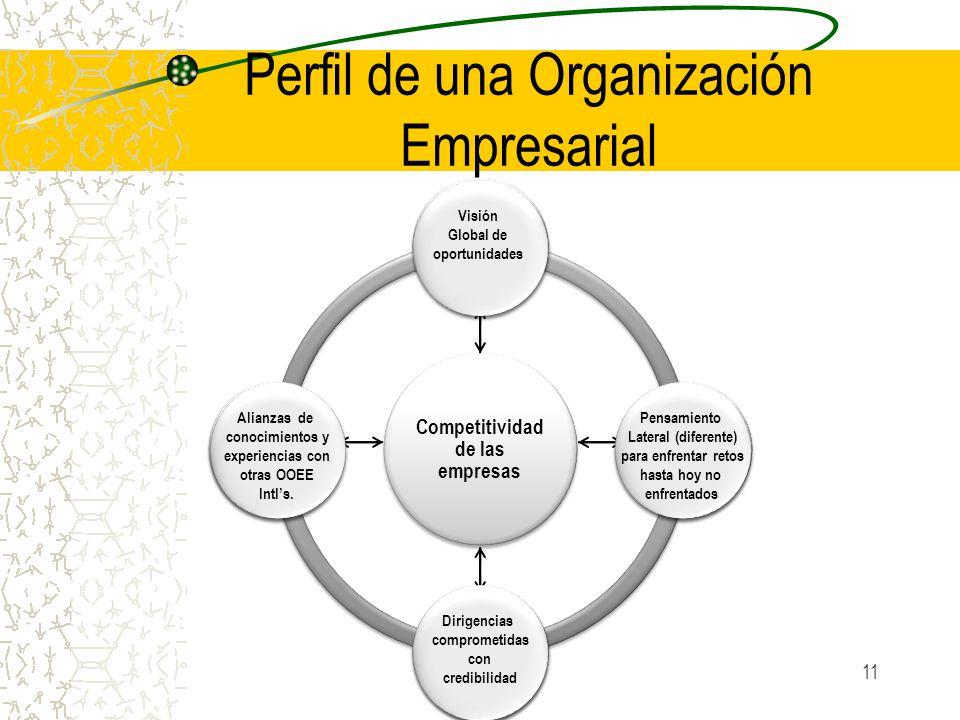 Perfil de una Organización Empresarial
