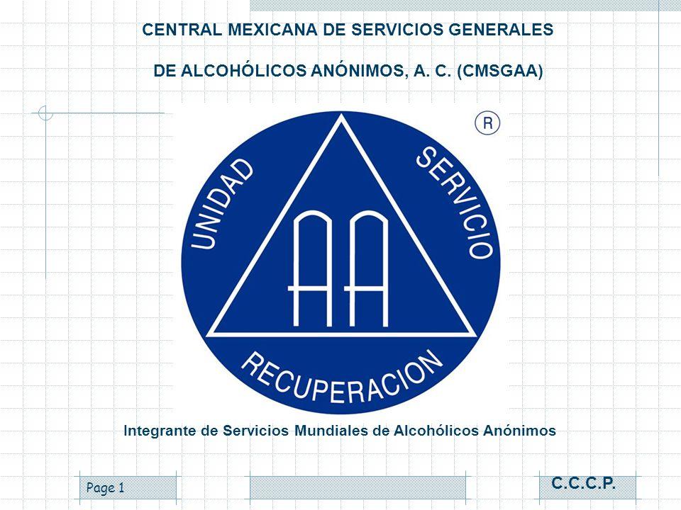 CENTRAL MEXICANA DE SERVICIOS GENERALES