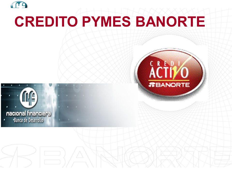 CREDITO PYMES BANORTE