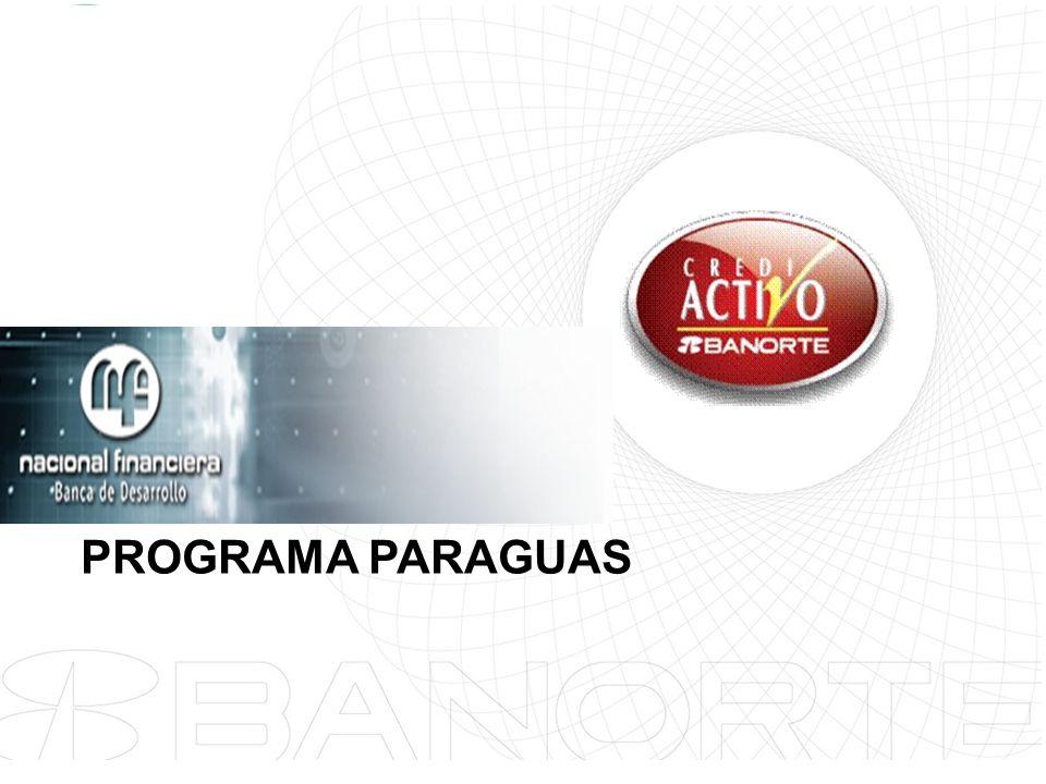 PROGRAMA PARAGUAS
