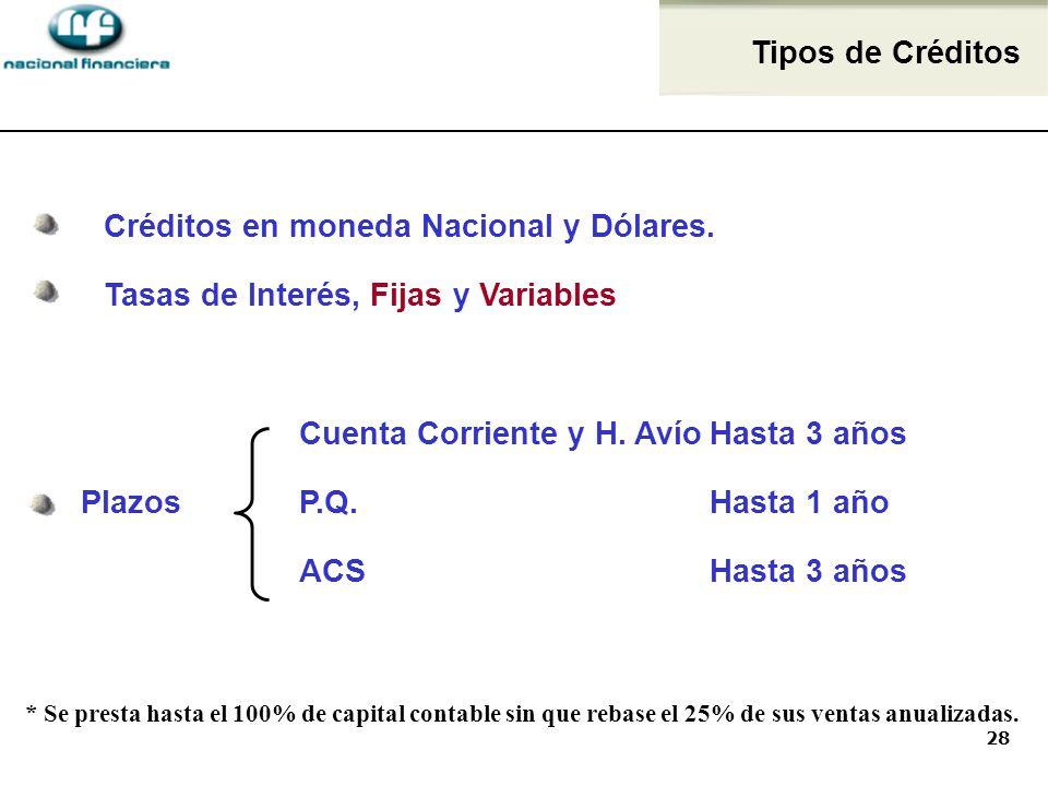Créditos en moneda Nacional y Dólares.
