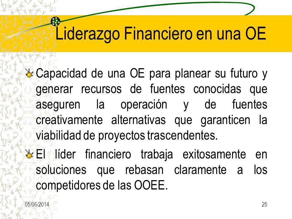 Liderazgo Financiero en una OE
