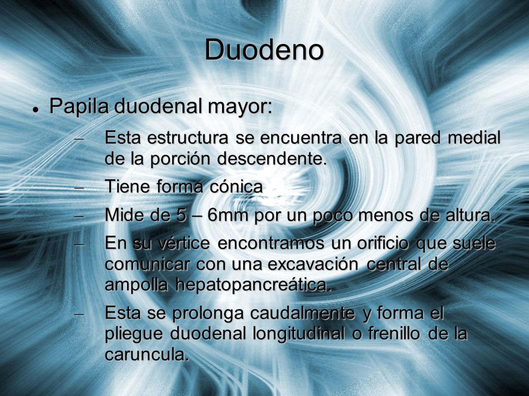 Duodeno Papila duodenal mayor: