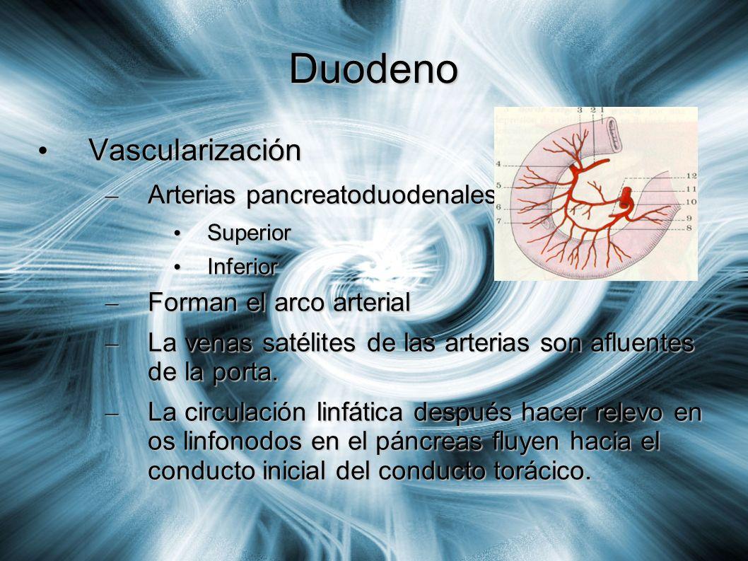 Duodeno Vascularización Arterias pancreatoduodenales:
