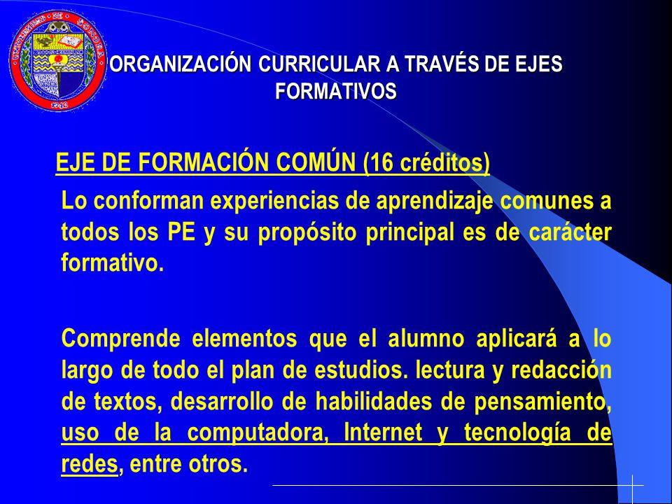 ORGANIZACIÓN CURRICULAR A TRAVÉS DE EJES FORMATIVOS