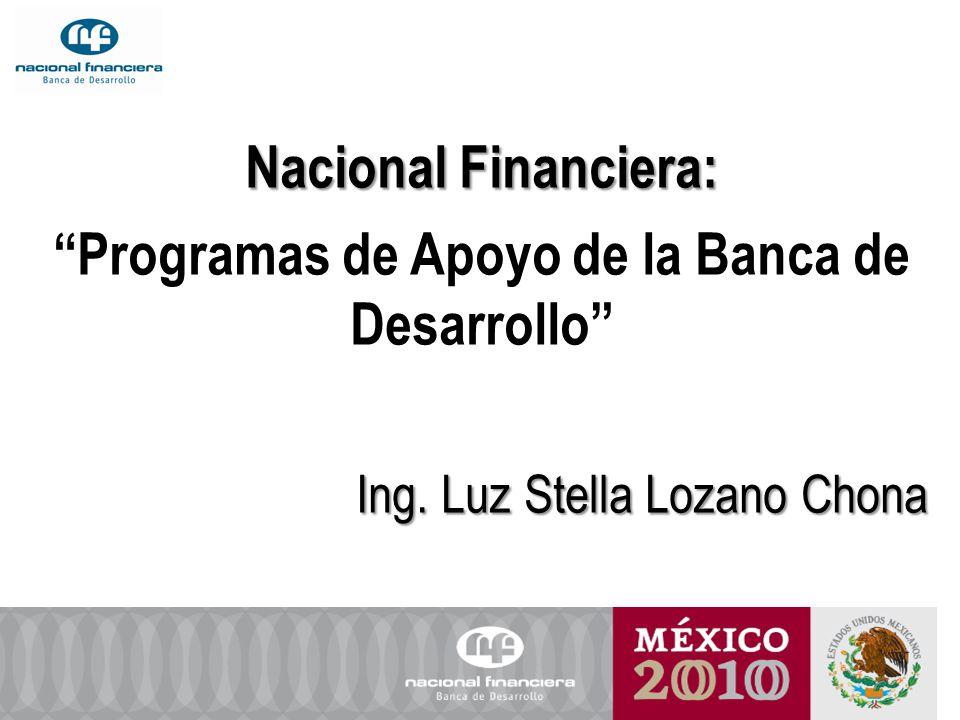 Programas de Apoyo de la Banca de Desarrollo