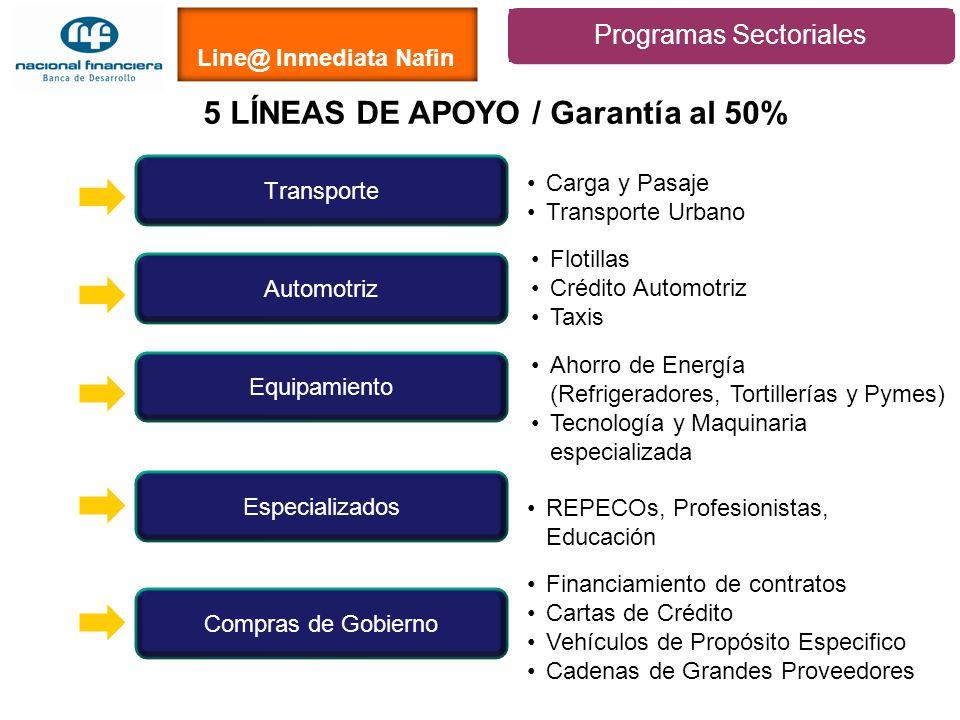 5 LÍNEAS DE APOYO / Garantía al 50%