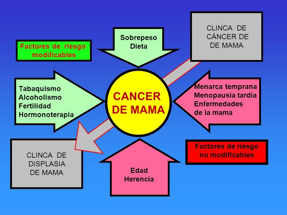 CANCER DE MAMA CLINCA DE CÁNCER DE DE MAMA Sobrepeso Dieta