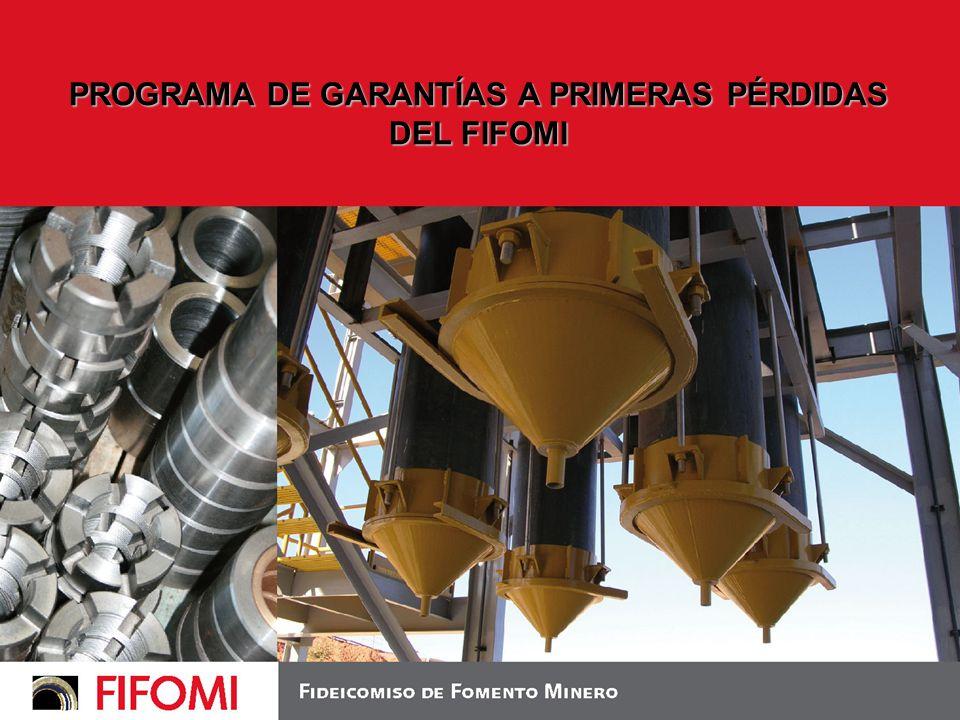 PROGRAMA DE GARANTÍAS A PRIMERAS PÉRDIDAS DEL FIFOMI