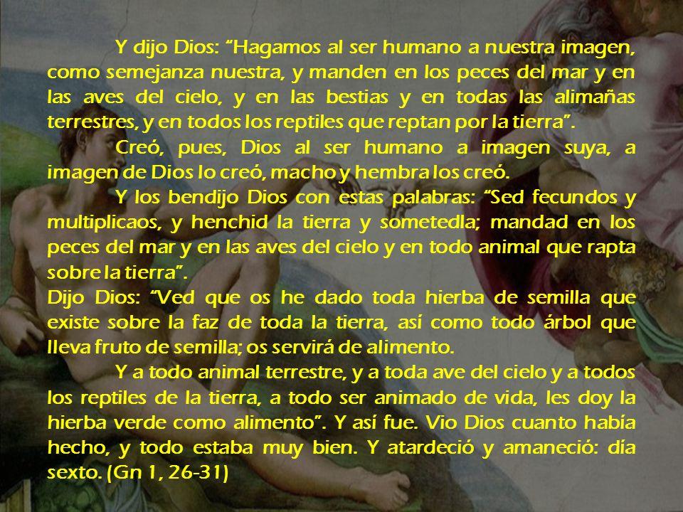 Y dijo Dios: Hagamos al ser humano a nuestra imagen, como semejanza nuestra, y manden en los peces del mar y en las aves del cielo, y en las bestias y en todas las alimañas terrestres, y en todos los reptiles que reptan por la tierra .