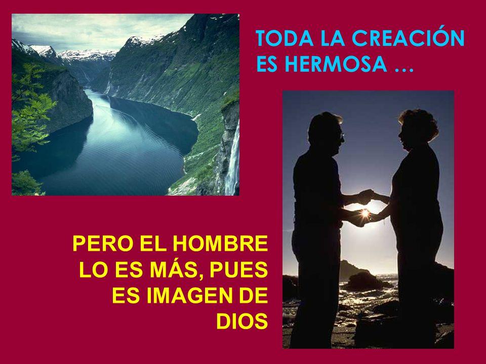 TODA LA CREACIÓN ES HERMOSA …