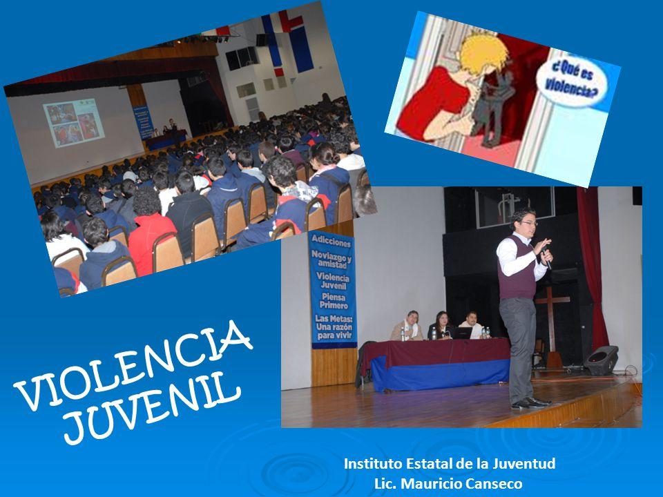 Instituto Estatal de la Juventud