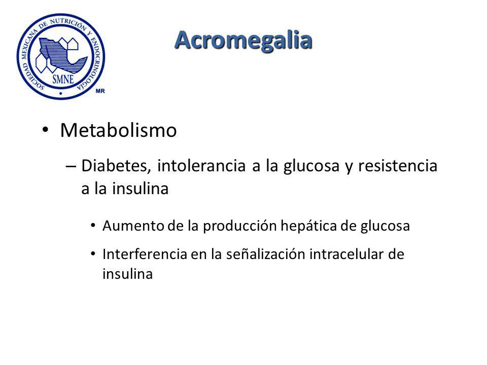 Acromegalia Metabolismo