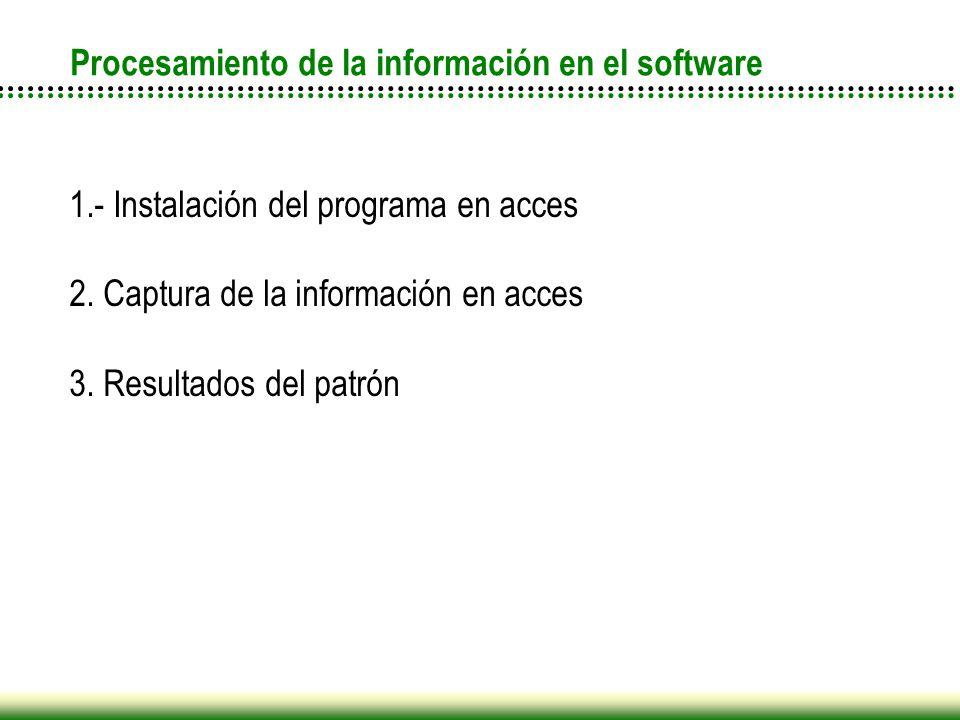 Procesamiento de la información en el software
