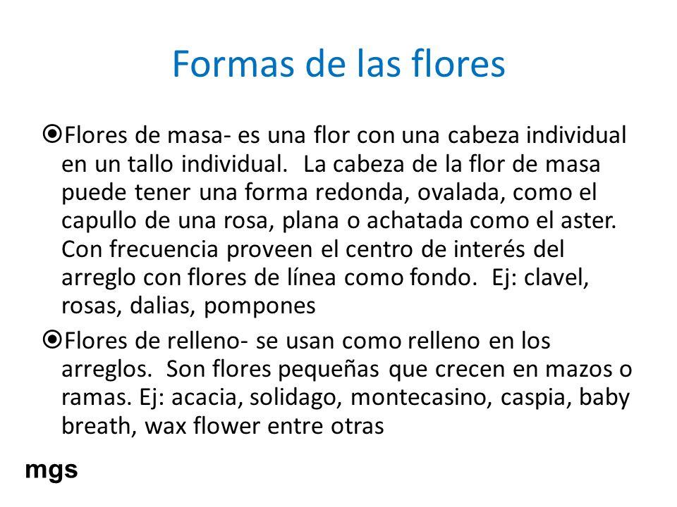 Formas de las flores