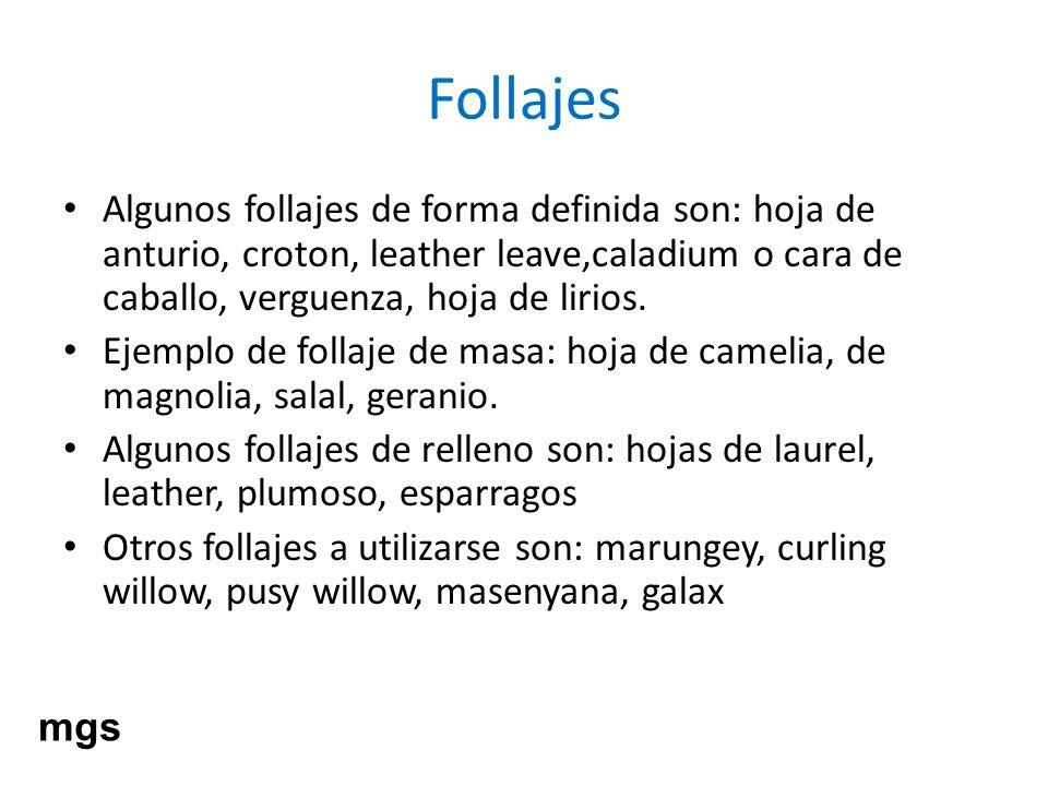 FollajesAlgunos follajes de forma definida son: hoja de anturio, croton, leather leave,caladium o cara de caballo, verguenza, hoja de lirios.