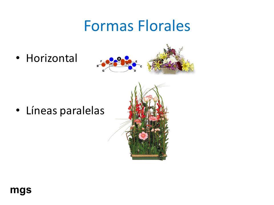 Formas Florales Horizontal Líneas paralelas mgs