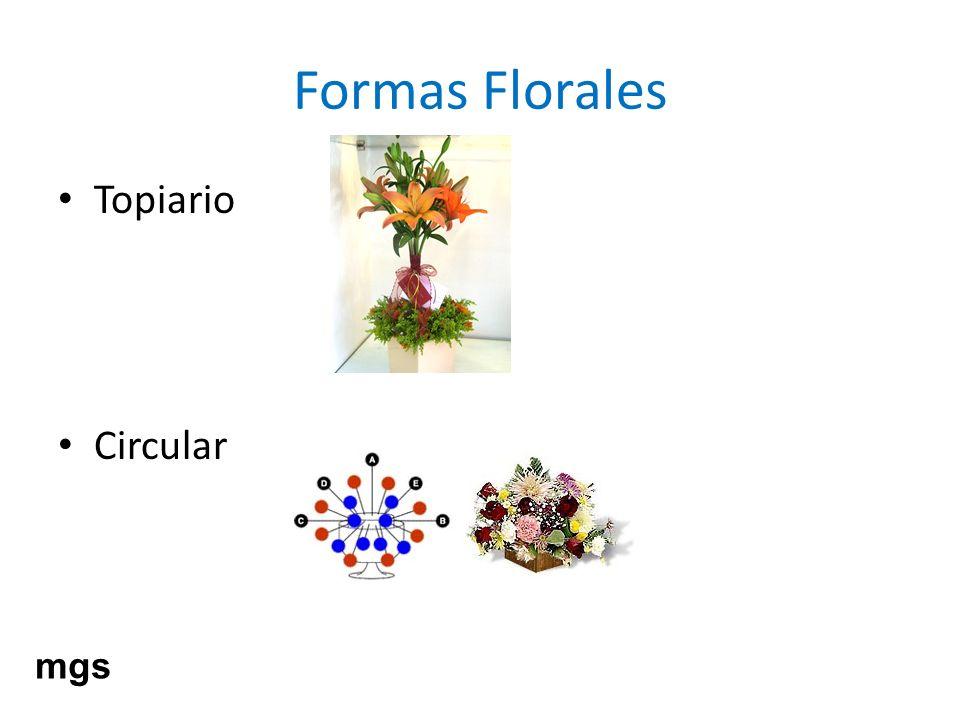 Formas Florales Topiario Circular mgs