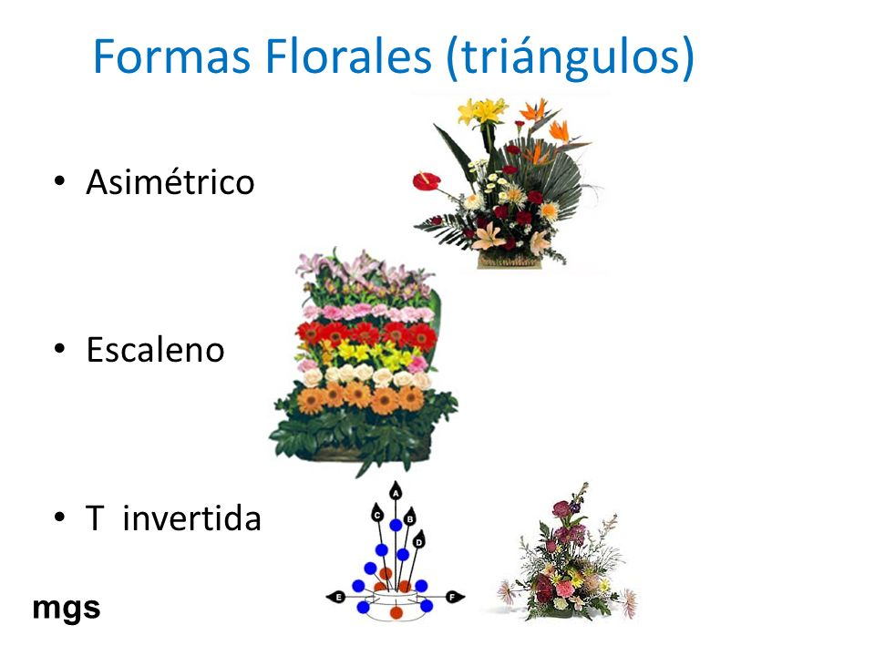 Formas Florales (triángulos)