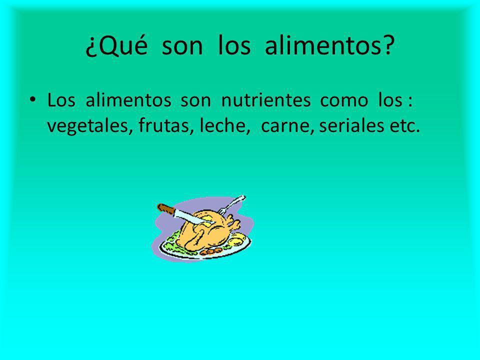 ¿Qué son los alimentos.