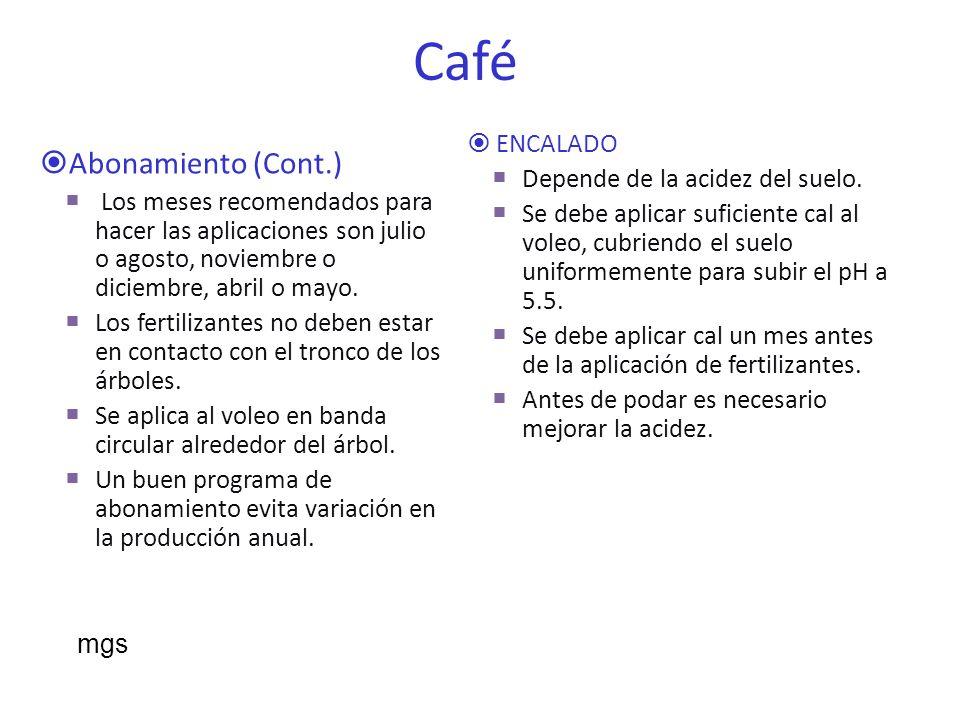 Café Abonamiento (Cont.) ENCALADO Depende de la acidez del suelo.