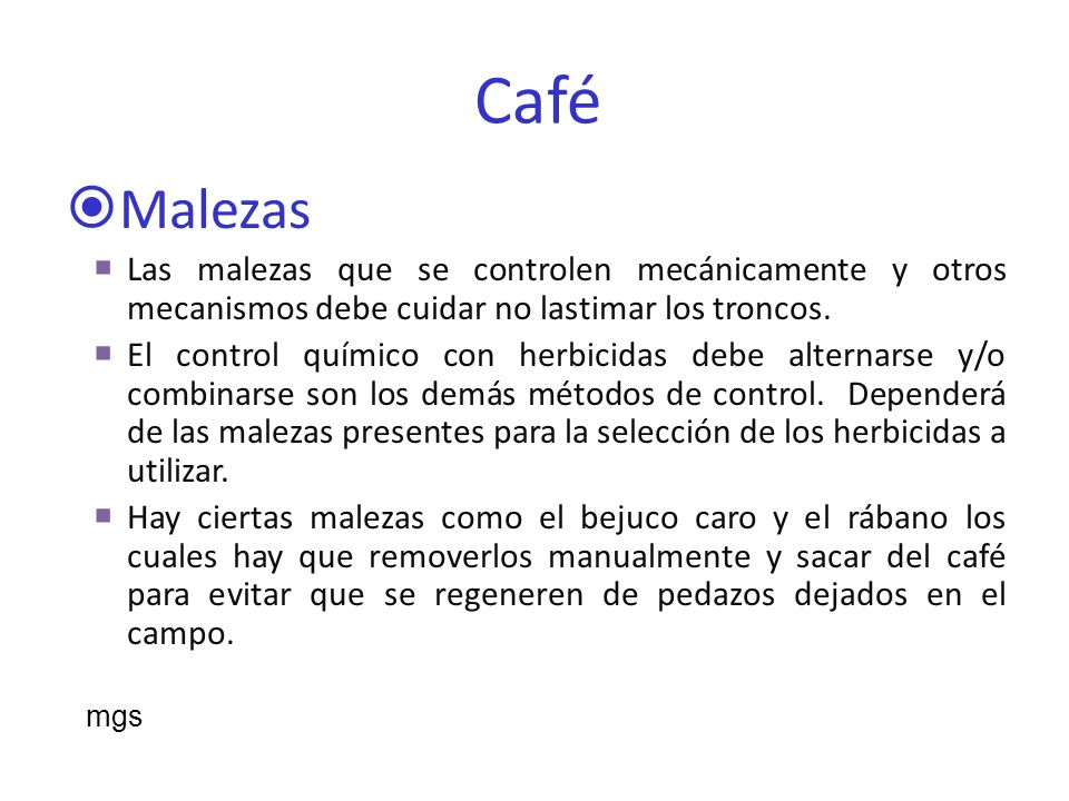 Café Malezas. Las malezas que se controlen mecánicamente y otros mecanismos debe cuidar no lastimar los troncos.
