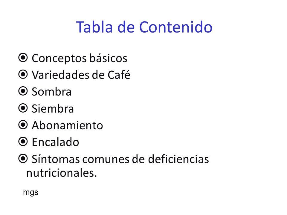 Tabla de Contenido Conceptos básicos Variedades de Café Sombra Siembra
